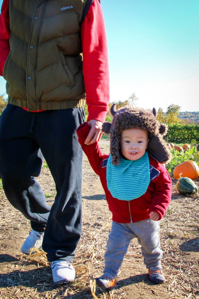 Pumpkin Picking Fun at Jones Family Farm #TMOM
